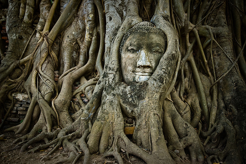 Wat Thailandia